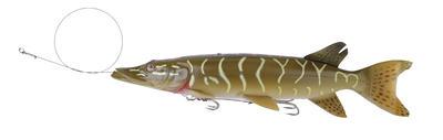 SG 3D Line Thru Pike 30cm 210g 01-Pike