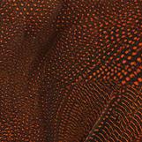 Guinea Fowl Saddle Speckled - Orange