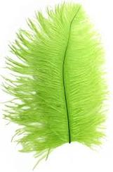 Ostrich Plume Chartreuse